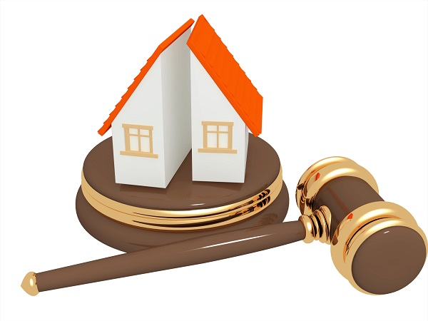 vector image of a miniature house with a law gavel